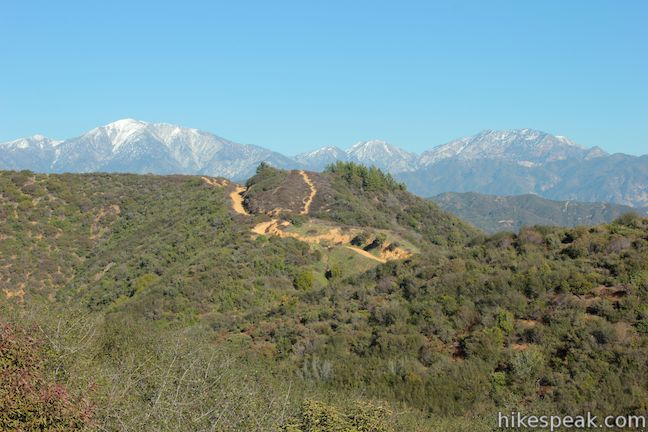 Mount Baldy from Glendora Ridge Motorway
