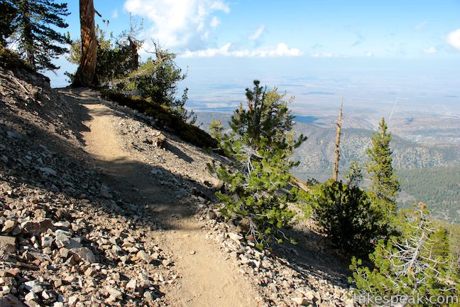 Mount Baden-Powell Pacific Crest Trail
