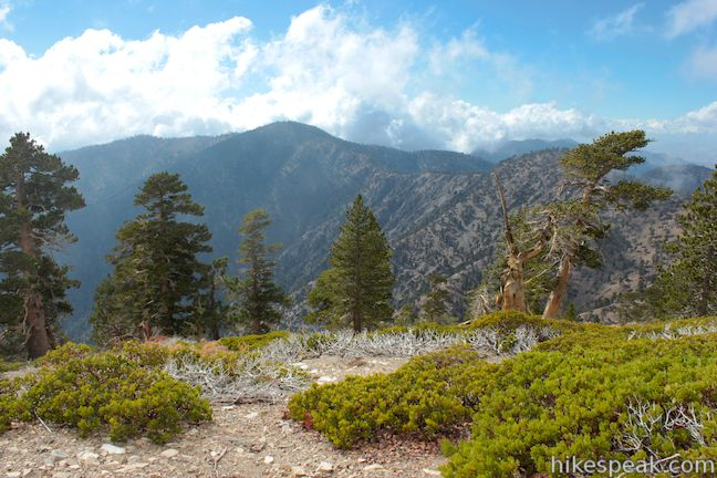 Mount Baden-Powell Throop Peak