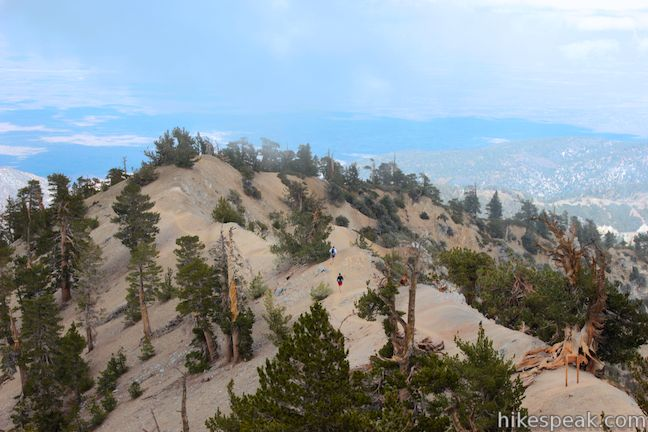 This 8.25-mile hike climbs one of the tallest summits in the San Gabriel Mountains and a monument to Lord Baden-Powell, a BSA icon and the founder of the Scout Movement.