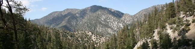Buckhorn Campground Angeles National Forest camp San Gabriel Mountains tent camping