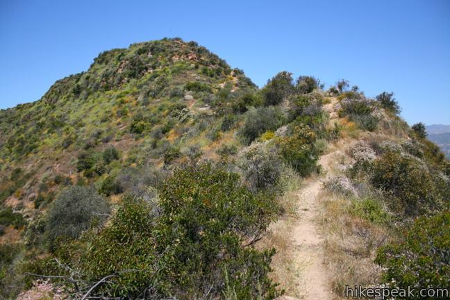 Cahuenga Peak Hike