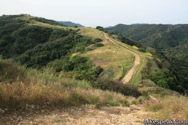 Upper Canyonback Trail in the Santa Monica Mountains