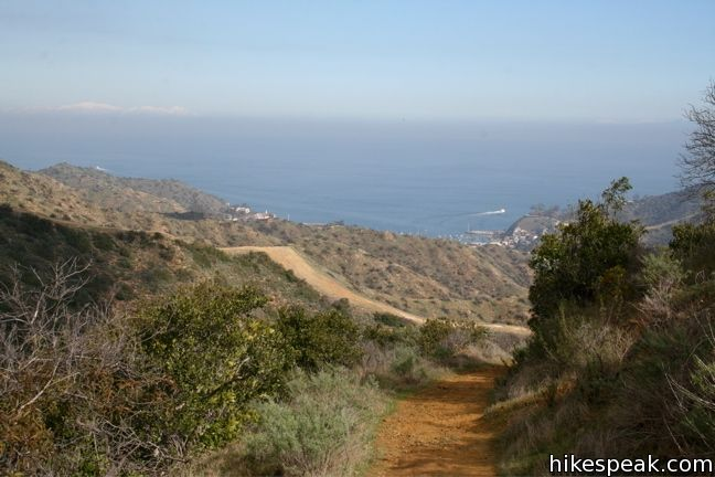 Hermit Gulch Trail – Trans-Catalina Trail Loop on Santa Catalina Island