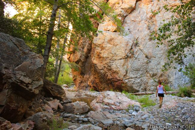 This 10.5-mile hike explores an enchanting narrow canyon on the east side of the Angeles National Forest in the Sierra Pelona Mountains north of Santa Clarita.