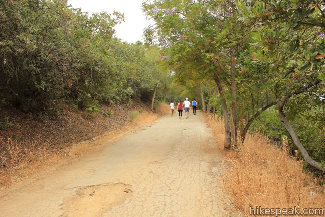 Fryman Canyon Loop in the Santa Monica Mountains