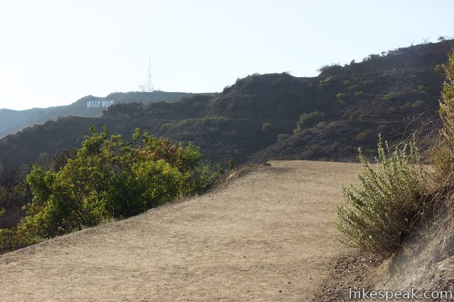 Griffith Observatory to Hollywood Sign Hike