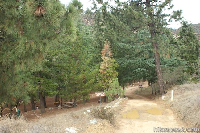 Henninger Campground Los Angeles Hikespeak Com