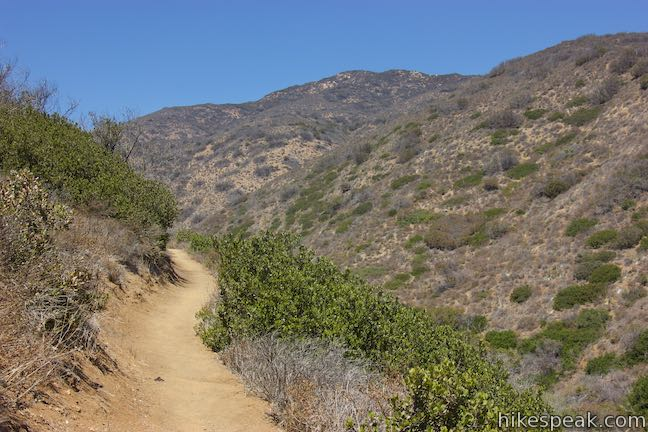 Willow Creek Trail Leo Carrillo State Park