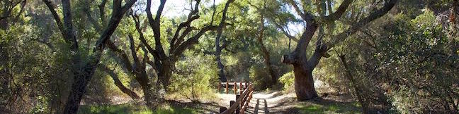 Oak Creek Canyon Loop Trail Los Robles Open Space Thousand Oaks California Santa Monica Mountains