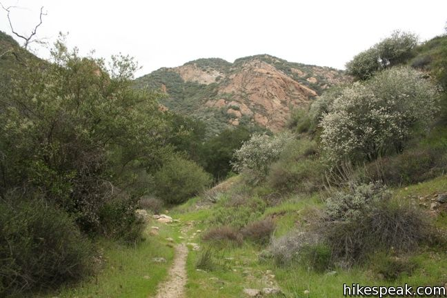 Malibu Creek hike