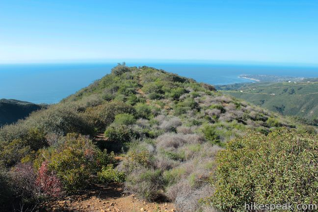 This 6.5-mile hike ascends the Backbone Trail from beautiful Malibu Creek State Park to a subtle summit with substantial ocean views