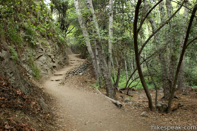 Falls Trail in Monrovia Canyon Park