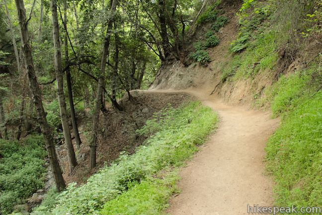 Monrovia Falls Trail Los Angeles Hikespeak Com
