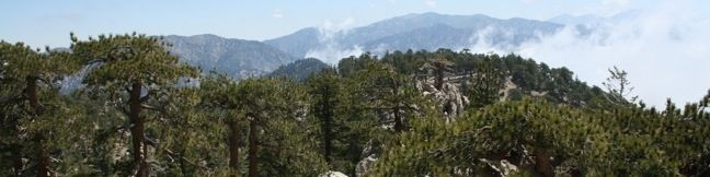 Mount Waterman hike Angeles National Forest San Gabriel Mountains National Monument Trail
