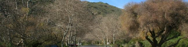Big Sycamore Canyon Campground Point Mugu State Park Santa Monica Mountains Malibu Hike Los Angeles