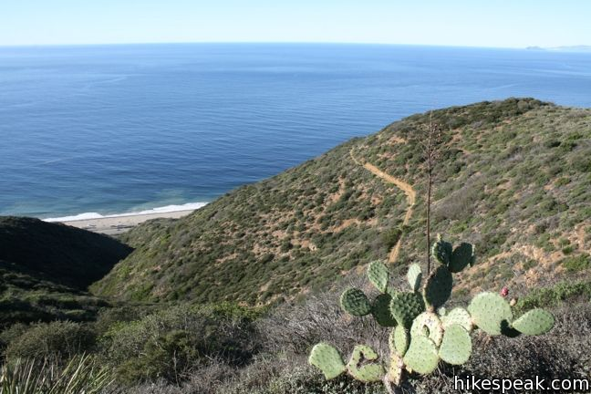 This 11.5-mile loop offers incredible ocean views, exploring Point Mugu State Park on the west end of the Santa Monica Mountains.