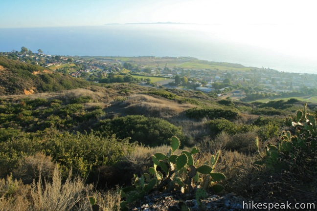 This 1.25-mile loop in Forrestal Nature Reserve delivers lots of ocean views as it circles an old bowl-shaped quarry on Palos Verdes Peninsula.