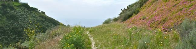 Lunado Canyon Trail hike Palos Verdes Peninsula California