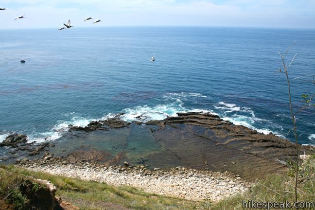 Palos Verdes Tide Pools