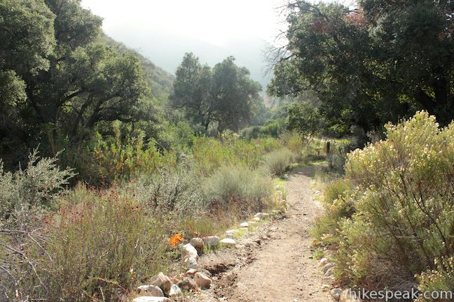 Placerita Canyon Ecology Trail