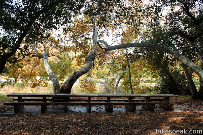 Placerita Canyon Park And Nature Center