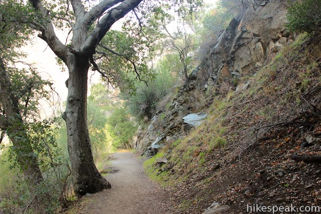 Eaton Canyon Natural Area Park And Nature Center