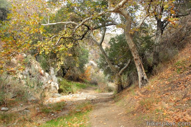 Placerita Canyon Trail