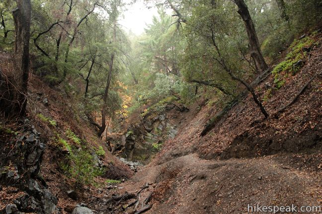 This 5 1/3-mile round trip hike in Placerita Canyon Natural Area follows Canyon Trail to the ruins of Walker Ranch and Waterfall Trail to an elusive falls in a sylvan canyon.