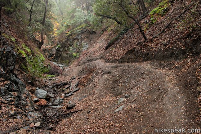 Los Pinetos Waterfall via Canyon Trail & Waterfall Trail in Placerita Canyon Natural Area
