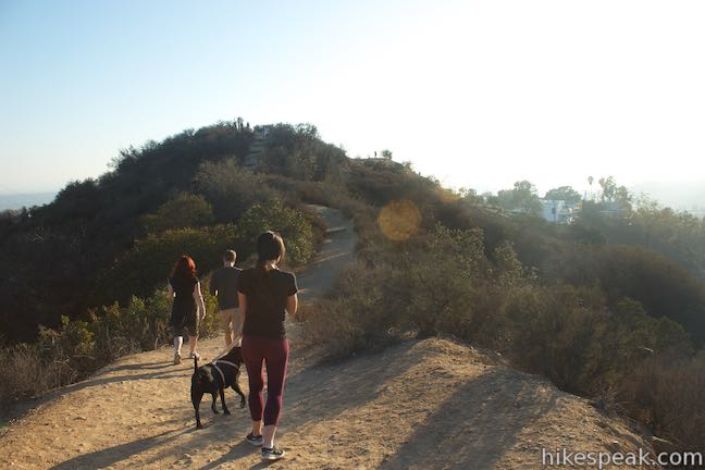 Dog-friendly Trails in Los Angeles
