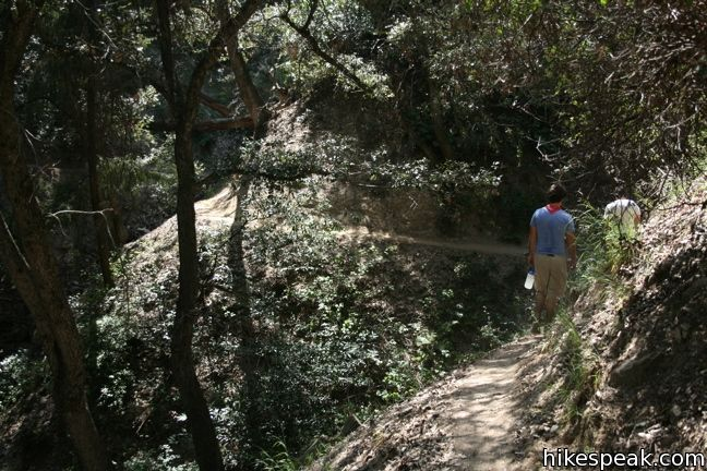 Lower Winter Creek Trail To Hoegees Camp Los Angeles