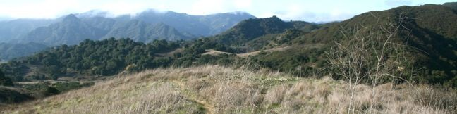 This scenic 4.75-mile lollypop loop with 500 feet of elevation gain incorporates North Grassland Trail, Liberty Canyon Trail, Las Virgenes Canyon Trail, and Talepop Trail to great an exceptional hike at the north end of Malibu Creek State Park