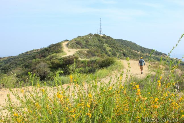 Beaudry Motorway Loop to Tongva Peak in the Verdugo Mountains