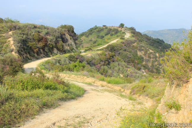 Beaudry Motorway Loop to Tongva Peak