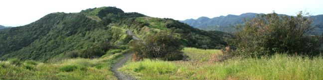 Westridge Trail to San Vicente Mountain Brentwood Los Angeles hikes