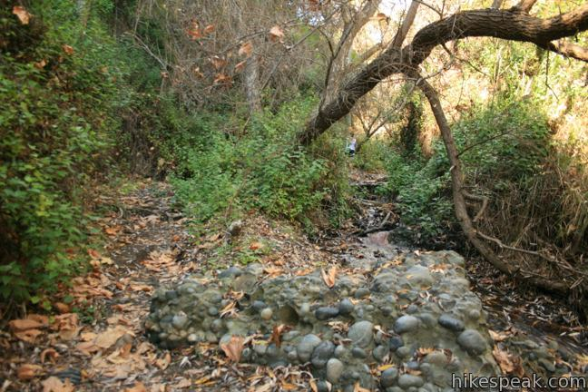Rustic Canyon hike Will Rogers