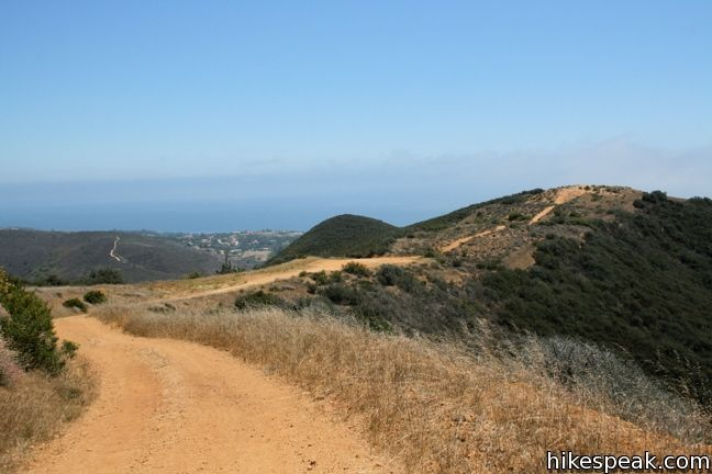Zuma Ridge Trail in the Santa Monica Mountains
