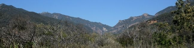 Zuma Canyon Trail Malibu Hike Santa Monica Mountains