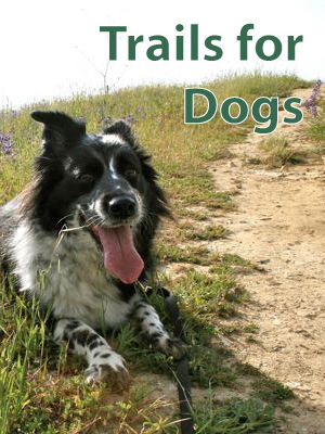 Dog Trails Los Angeles